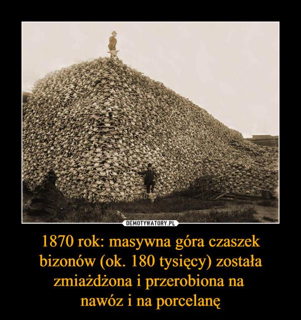 1870 rok: masywna góra czaszek bizonów (ok. 180 tysięcy) została zmiażdżona i przerobiona na nawóz i na porcelanę –