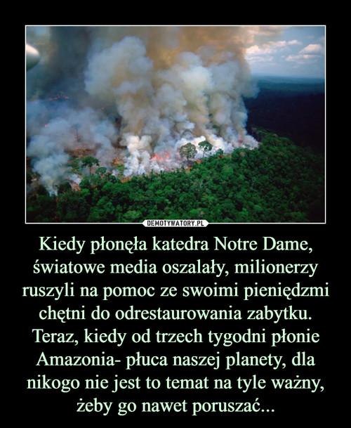 Kiedy płonęła katedra Notre Dame, światowe media oszalały, milionerzy ruszyli na pomoc ze swoimi pieniędzmi chętni do odrestaurowania zabytku. Teraz, kiedy od trzech tygodni płonie Amazonia- płuca naszej planety, dla nikogo nie jest to temat na tyle ważny, żeby go nawet poruszać...