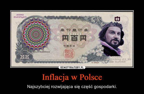 Inflacja w Polsce – Najszybciej rozwijająca się część gospodarki.