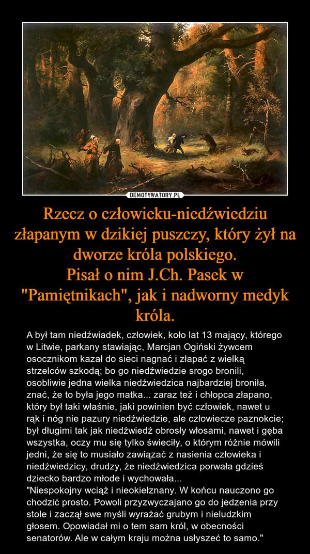 """Rzecz o człowieku-niedźwiedziu złapanym w dzikiej puszczy, który żył na dworze króla polskiego.Pisał o nim J.Ch. Pasek w """"Pamiętnikach"""", jak i nadworny medyk króla. – A był tam niedźwiadek, człowiek, koło lat 13 mający, którego w Litwie, parkany stawiając, Marcjan Ogiński żywcem osocznikom kazał do sieci nagnać i złapać z wielką strzelców szkodą; bo go niedźwiedzie srogo bronili, osobliwie jedna wielka niedźwiedzica najbardziej broniła, znać, że to była jego matka... zaraz też i chłopca złapano, który był taki właśnie, jaki powinien być człowiek, nawet u rąk i nóg nie pazury niedźwiedzie, ale człowiecze paznokcie; był długimi tak jak niedźwiedź obrosły włosami, nawet i gęba wszystka, oczy mu się tylko świeciły, o którym różnie mówili jedni, że się to musiało zawiązać z nasienia człowieka i niedźwiedzicy, drudzy, że niedźwiedzica porwała gdzieś dziecko bardzo młode i wychowała...""""Niespokojny wciąż i nieokiełznany. W końcu nauczono go chodzić prosto. Powoli przyzwyczajano go do jedzenia przy stole i zaczął swe myśli wyrażać grubym i nieludzkim głosem. Opowiadał mi o tem sam król, w obecności senatorów. Ale w całym kraju można usłyszeć to samo."""""""