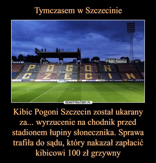 Kibic Pogoni Szczecin został ukarany za... wyrzucenie na chodnik przed stadionem łupiny słonecznika. Sprawa trafiła do sądu, który nakazał zapłacić kibicowi 100 zł grzywny –