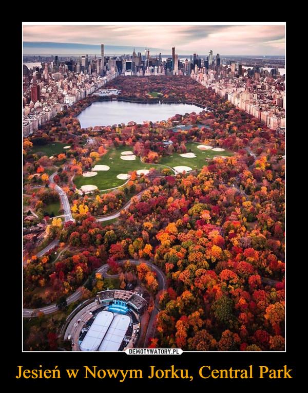 Jesień w Nowym Jorku, Central Park –