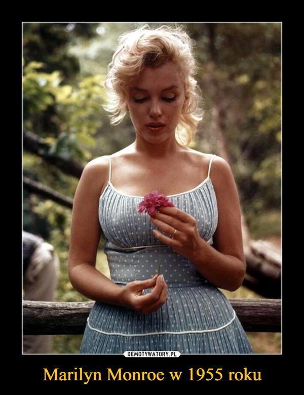 Marilyn Monroe w 1955 roku –