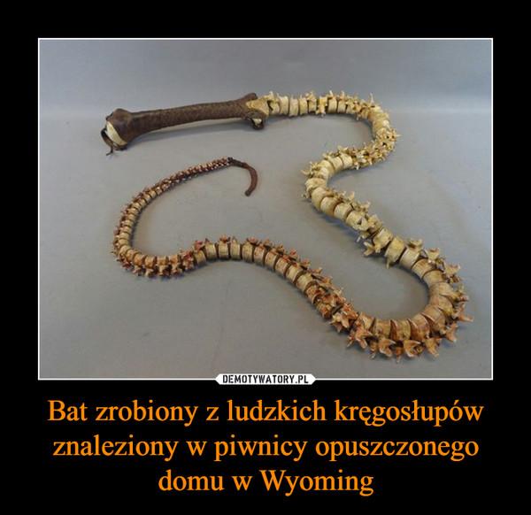 Bat zrobiony z ludzkich kręgosłupów znaleziony w piwnicy opuszczonego domu w Wyoming –