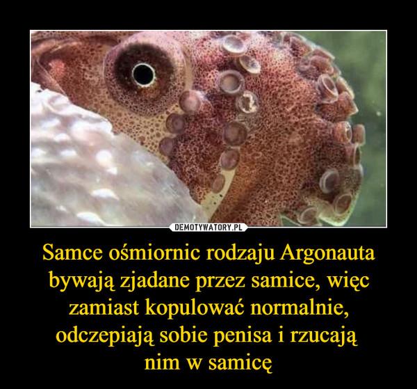 Samce ośmiornic rodzaju Argonauta bywają zjadane przez samice, więc zamiast kopulować normalnie, odczepiają sobie penisa i rzucają nim w samicę –