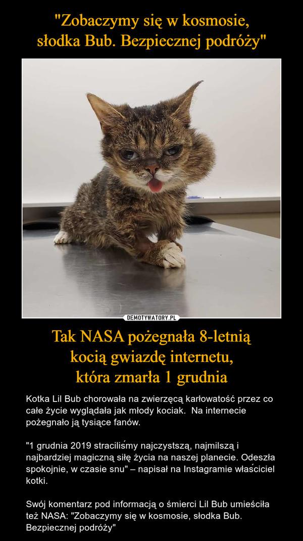 """Tak NASA pożegnała 8-letniąkocią gwiazdę internetu,która zmarła 1 grudnia – Kotka Lil Bub chorowała na zwierzęcą karłowatość przez co całe życie wyglądała jak młody kociak.  Na internecie pożegnało ją tysiące fanów.""""1 grudnia 2019 straciliśmy najczystszą, najmilszą i najbardziej magiczną siłę życia na naszej planecie. Odeszła spokojnie, w czasie snu"""" – napisał na Instagramie właściciel kotki.Swój komentarz pod informacją o śmierci Lil Bub umieściła też NASA: """"Zobaczymy się w kosmosie, słodka Bub. Bezpiecznej podróży"""""""