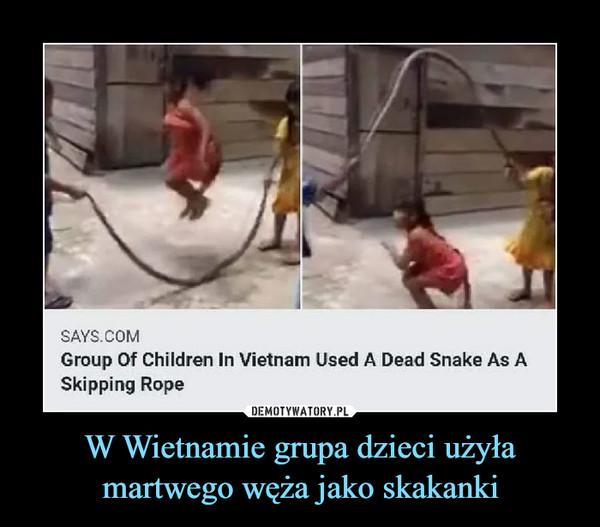 W Wietnamie grupa dzieci użyła martwego węża jako skakanki –