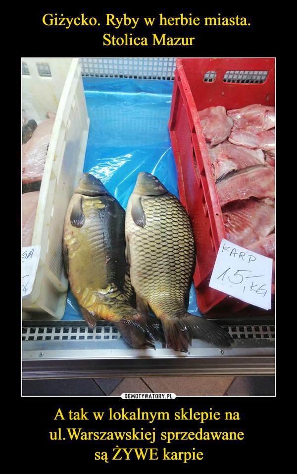 A tak w lokalnym sklepie na ul.Warszawskiej sprzedawane są ŻYWE karpie –