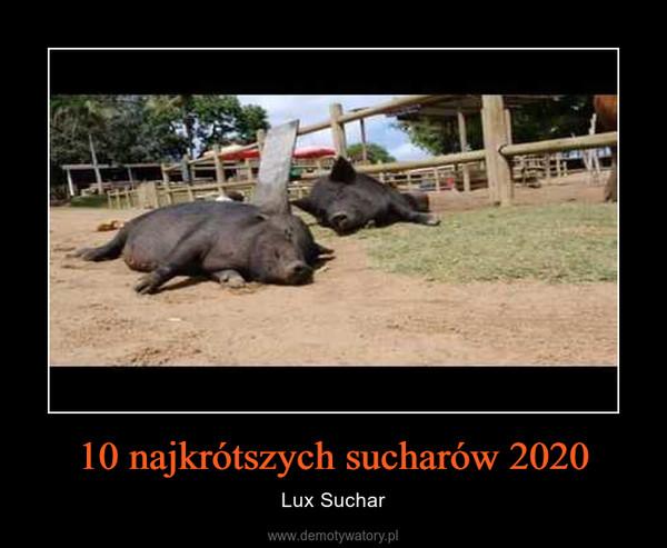 10 najkrótszych sucharów 2020 – Lux Suchar