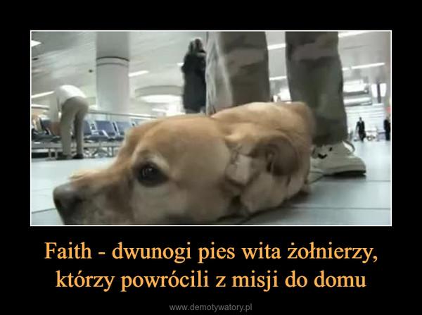Faith - dwunogi pies wita żołnierzy, którzy powrócili z misji do domu –