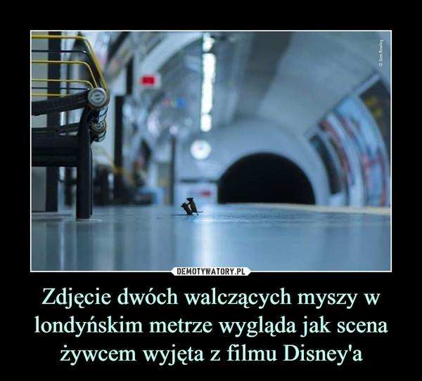 Zdjęcie dwóch walczących myszy w londyńskim metrze wygląda jak scena żywcem wyjęta z filmu Disney'a –