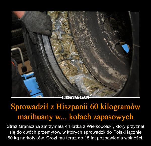 Sprowadził z Hiszpanii 60 kilogramów marihuany w... kołach zapasowych – Straż Graniczna zatrzymała 44-latka z Wielkopolski, który przyznał się do dwóch przemytów, w których sprowadził do Polski łącznie 60 kg narkotyków. Grozi mu teraz do 15 lat pozbawienia wolności.