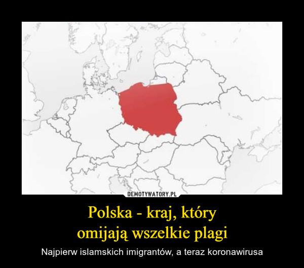 Polska - kraj, któryomijają wszelkie plagi – Najpierw islamskich imigrantów, a teraz koronawirusa