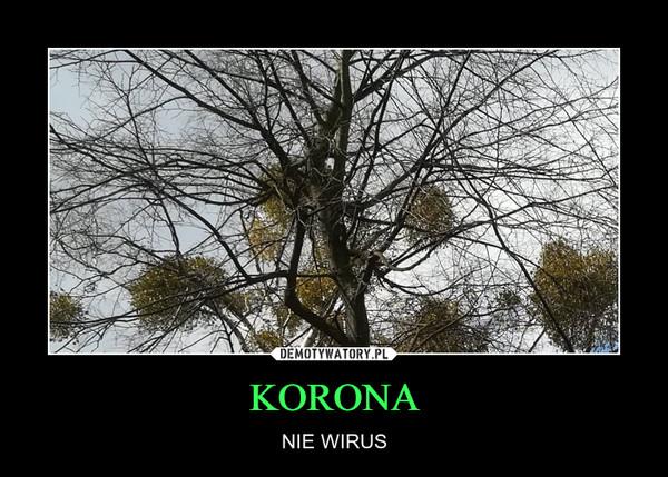 KORONA – NIE WIRUS