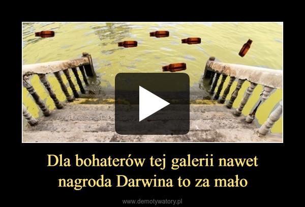 Dla bohaterów tej galerii nawetnagroda Darwina to za mało –