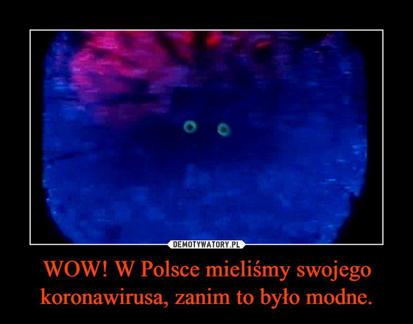WOW! W Polsce mieliśmy swojego koronawirusa, zanim to było modne. –
