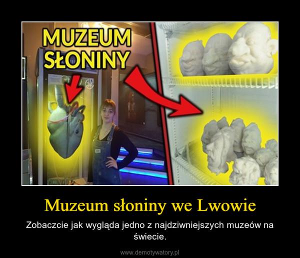 Muzeum słoniny we Lwowie – Zobaczcie jak wygląda jedno z najdziwniejszych muzeów na świecie.