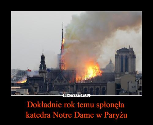 Dokładnie rok temu spłonęła  katedra Notre Dame w Paryżu