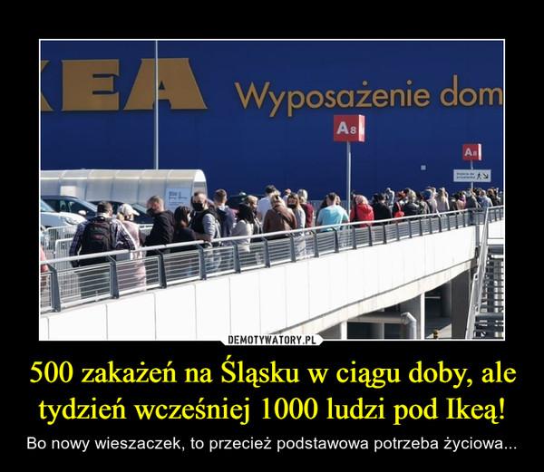 500 zakażeń na Śląsku w ciągu doby, ale tydzień wcześniej 1000 ludzi pod Ikeą! – Bo nowy wieszaczek, to przecież podstawowa potrzeba życiowa...