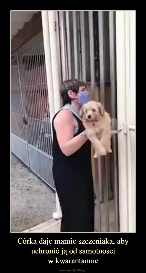 Córka daje mamie szczeniaka, aby uchronić ją od samotnościw kwarantannie –