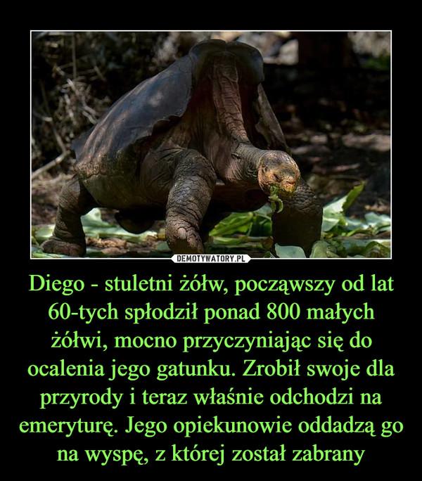 Diego - stuletni żółw, począwszy od lat 60-tych spłodził ponad 800 małych żółwi, mocno przyczyniając się do ocalenia jego gatunku. Zrobił swoje dla przyrody i teraz właśnie odchodzi na emeryturę. Jego opiekunowie oddadzą go na wyspę, z której został zabrany –
