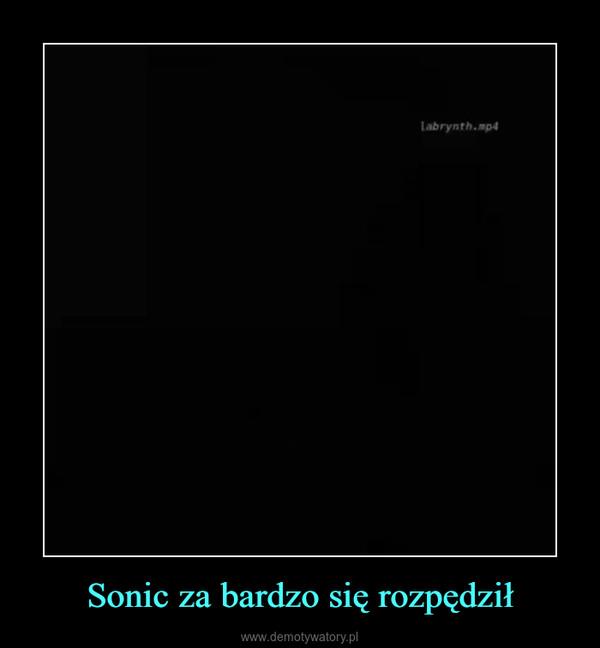 Sonic za bardzo się rozpędził –
