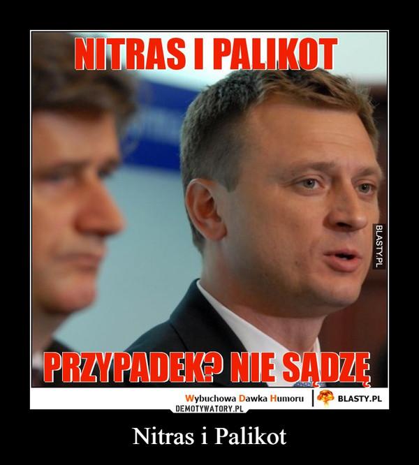 Nitras i Palikot –