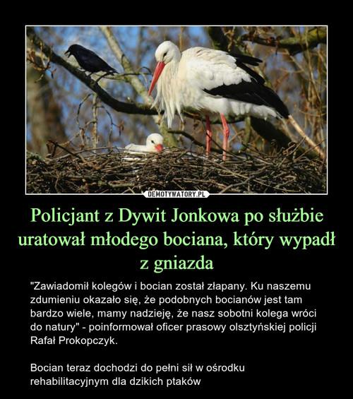 Policjant z Dywit Jonkowa po służbie uratował młodego bociana, który wypadł z gniazda