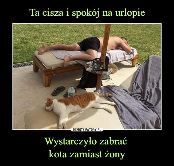 Wystarczyło zabrać kota zamiast żony –