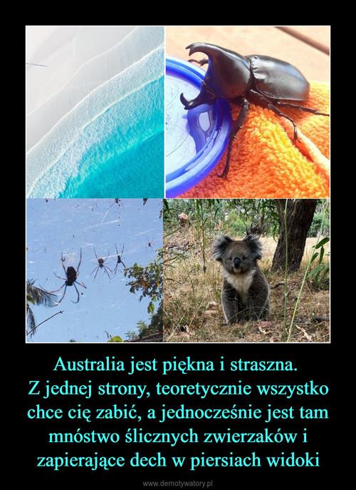 Australia jest piękna i straszna.  Z jednej strony, teoretycznie wszystko chce cię zabić, a jednocześnie jest tam mnóstwo ślicznych zwierzaków i zapierające dech w piersiach widoki