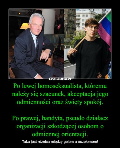 Po lewej homoseksualista, któremu należy się szacunek, akceptacja jego odmienności oraz święty spokój.  Po prawej, bandyta, pseudo działacz organizacji szkodzącej osobom o odmiennej orientacji.