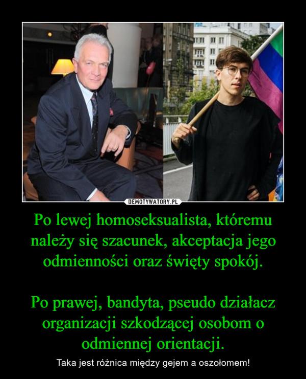 Po lewej homoseksualista, któremu należy się szacunek, akceptacja jego odmienności oraz święty spokój.Po prawej, bandyta, pseudo działacz organizacji szkodzącej osobom o odmiennej orientacji. – Taka jest różnica między gejem a oszołomem!