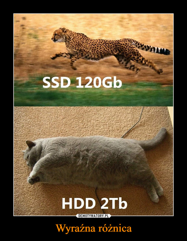 Wyraźna różnica –  SSD 120 GbHDD 2Tb