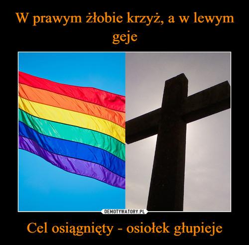 W prawym żłobie krzyż, a w lewym geje Cel osiągnięty - osiołek głupieje