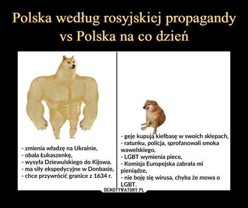 Polska według rosyjskiej propagandy vs Polska na co dzień
