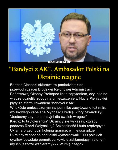 """Bandyci z AK"". Ambasador Polski na Ukrainie reaguje"
