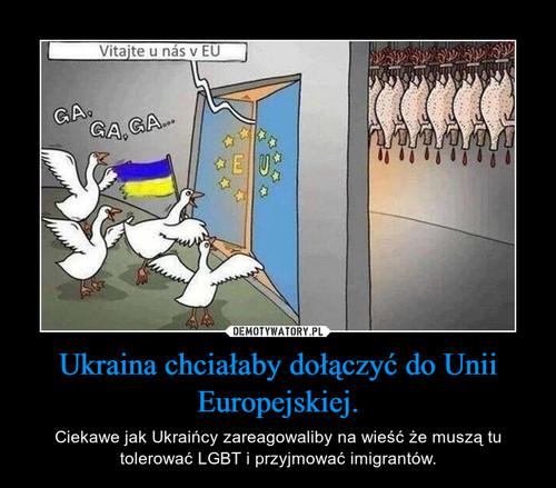 Ukraina chciałaby dołączyć do Unii Europejskiej.