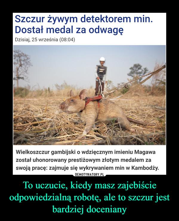 To uczucie, kiedy masz zajebiście odpowiedzialną robotę, ale to szczur jest bardziej doceniany –  Szczur żywym detektorem min.Dostał medal za odwagęDzisiaj, 25 września (08:04)Wielkoszczur gambijski o wdzięcznym imieniu Magawazostał uhonorowany prestiżowym złotym medalem zaswoją pracę: zajmuje się wykrywaniem min w Kambodży.DEMOTYWATORY.PLTo uczucie, kiedy szczur ma ciekawsząpracę od ciebie