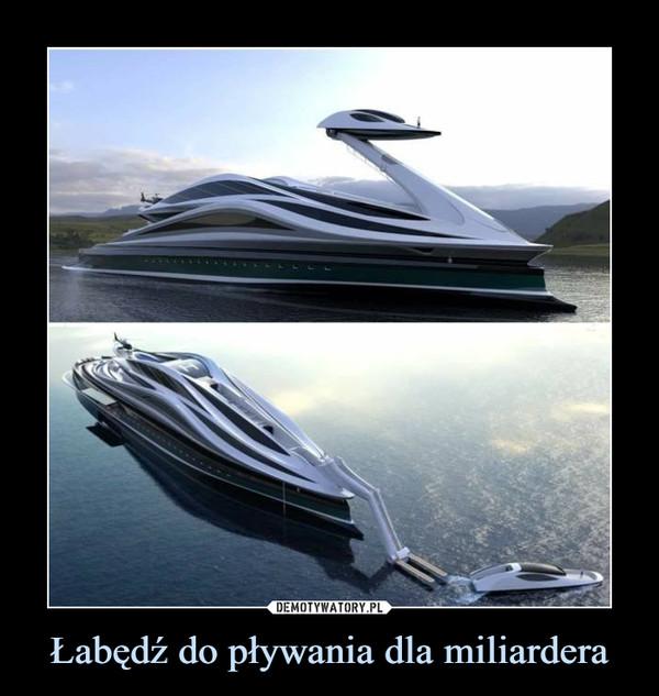Łabędź do pływania dla miliardera –