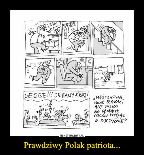 Prawdziwy Polak patriota...