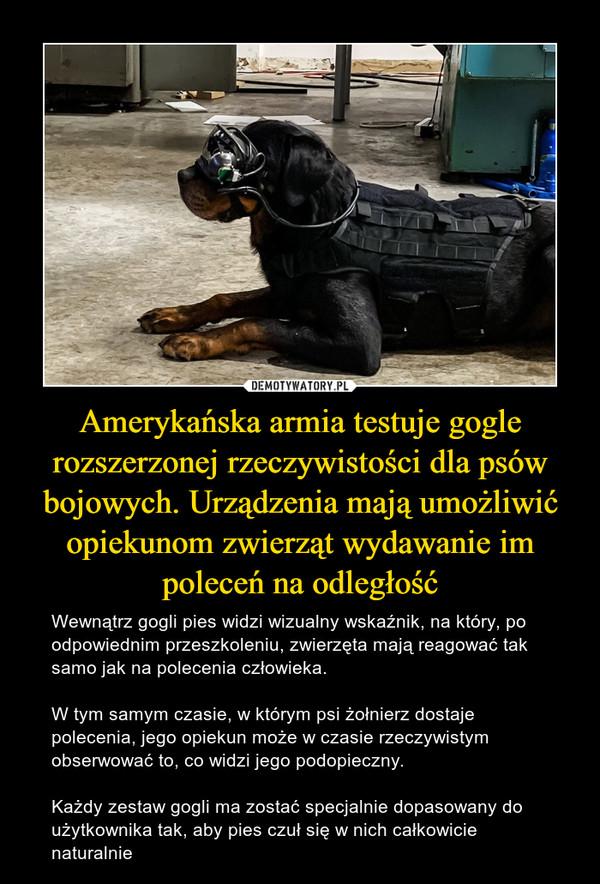 Amerykańska armia testuje gogle rozszerzonej rzeczywistości dla psów bojowych. Urządzenia mają umożliwić opiekunom zwierząt wydawanie im poleceń na odległość – Wewnątrz gogli pies widzi wizualny wskaźnik, na który, po odpowiednim przeszkoleniu, zwierzęta mają reagować tak samo jak na polecenia człowieka. W tym samym czasie, w którym psi żołnierz dostaje polecenia, jego opiekun może w czasie rzeczywistym obserwować to, co widzi jego podopieczny. Każdy zestaw gogli ma zostać specjalnie dopasowany do użytkownika tak, aby pies czuł się w nich całkowicie naturalnie