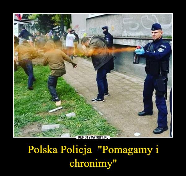 """Polska Policja  """"Pomagamy i chronimy"""" –"""