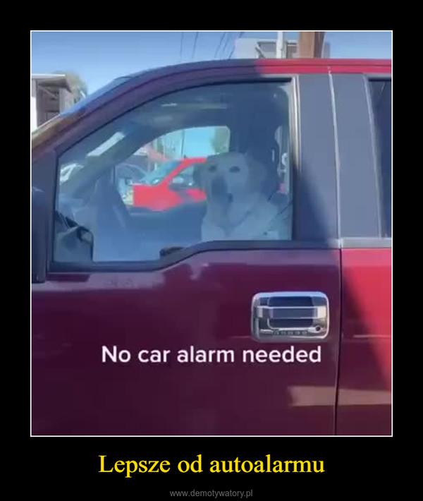 Lepsze od autoalarmu –