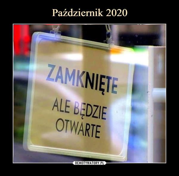 https://img20.dmty.pl//uploads/202010/1603352601_bimyjj_600.jpg