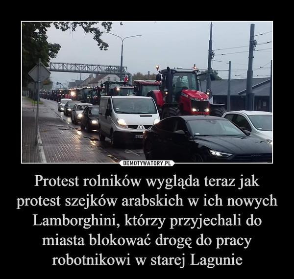Protest rolników wygląda teraz jak protest szejków arabskich w ich nowych Lamborghini, którzy przyjechali do miasta blokować drogę do pracy robotnikowi w starej Lagunie –