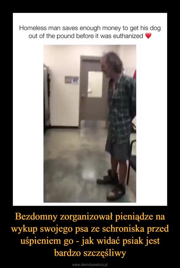 Bezdomny zorganizował pieniądze na wykup swojego psa ze schroniska przed uśpieniem go - jak widać psiak jest bardzo szczęśliwy –