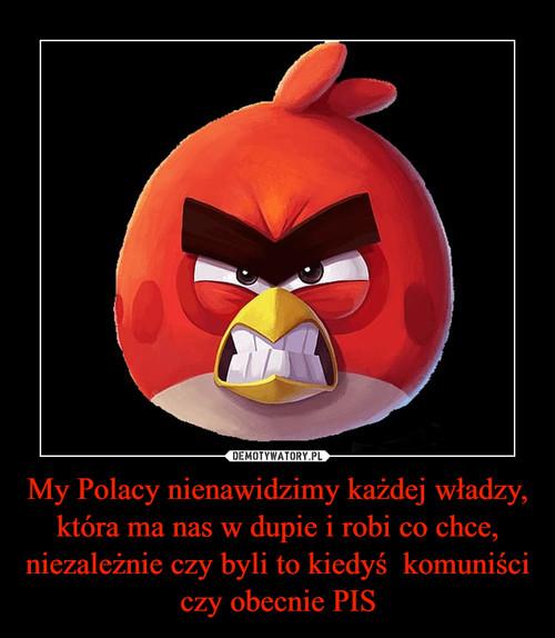 My Polacy nienawidzimy każdej władzy, która ma nas w dupie i robi co chce, niezależnie czy byli to kiedyś  komuniści czy obecnie PIS