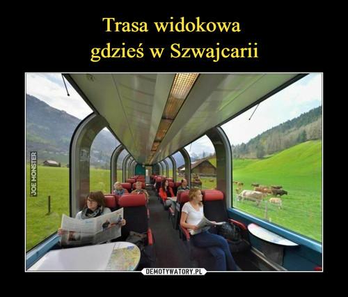 Trasa widokowa  gdzieś w Szwajcarii