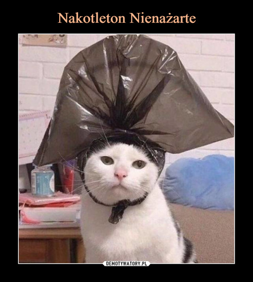 Nakotleton Nienażarte