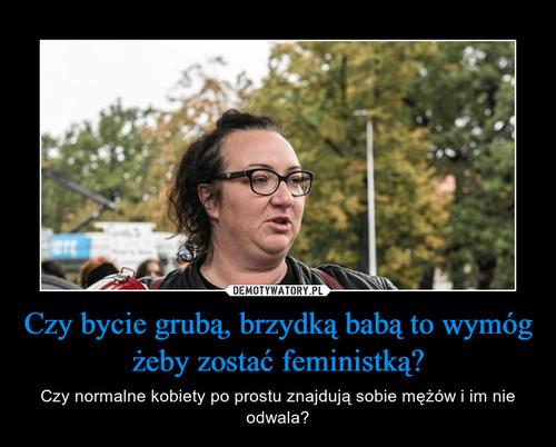 Czy bycie grubą, brzydką babą to wymóg żeby zostać feministką?